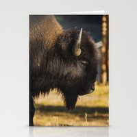 Yellowstone National Park - Bison Stationery Cards