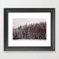 Winter 231 Framed Art Print