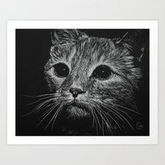 Wide Eyed Cat Art Print