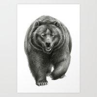 Brown Bear SK068 Art Print