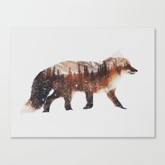 Arctic Red Fox Canvas Print