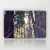 Redwoods Hike Laptop & iPad Skin