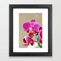 Mini Orchid in Purple Framed Art Print