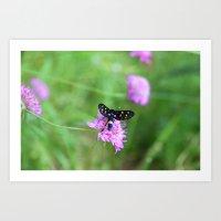 Birds, Bees And Butterfl… Art Print