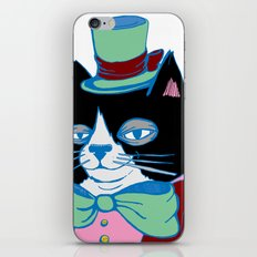 Dignified Cat Does Pastels iPhone & iPod Skin