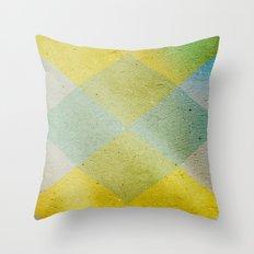 Remember Summer Throw Pillow