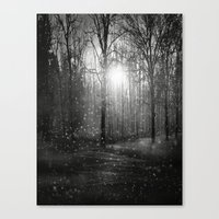 Black And White - In See… Canvas Print