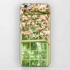 Rear Window iPhone & iPod Skin