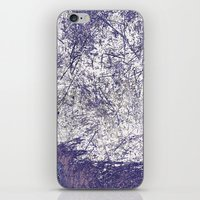 Prairie Dusk iPhone & iPod Skin