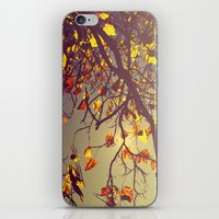 One Fine Day  iPhone & iPod Skin