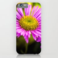 iPhone Cases featuring Summer Daisy by Adrian Evans
