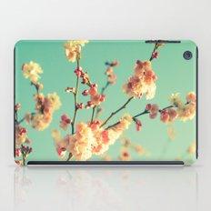Spring memory iPad Case