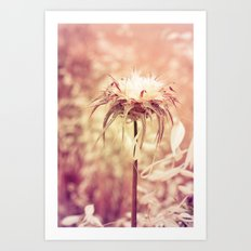 Recalling the summer Art Print