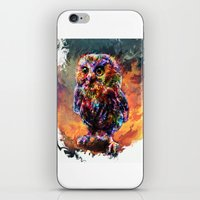 Brave Little Owl iPhone & iPod Skin