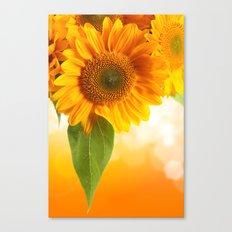 Nice Sunflowers Canvas Print
