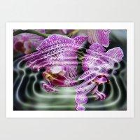 Sunken Orchids Art Print