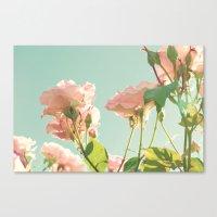 Mint Palermo Roses Canvas Print
