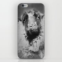 Sheep Person iPhone & iPod Skin
