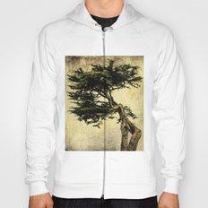 Cypress Tree Hoody