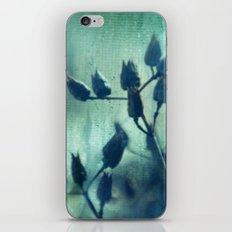 Layered Dreams iPhone & iPod Skin