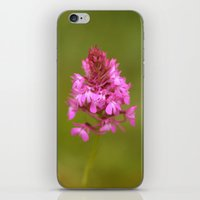Wild Orchid 2330 iPhone & iPod Skin