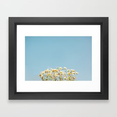 Daisies in the Sky Framed Art Print