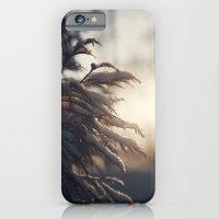 Winter Morn iPhone 6 Slim Case