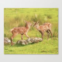 Baby Reds Canvas Print