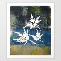 Acer Art Print