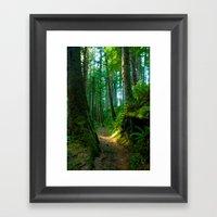 Green Pathway Framed Art Print