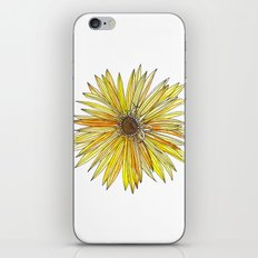 Yellow Gerber Daisy iPhone & iPod Skin