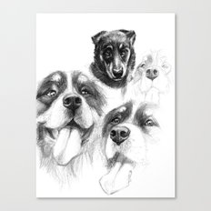Dogs  sk128 Canvas Print
