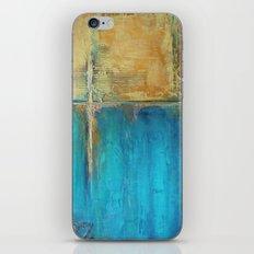 Caribbean Cargo iPhone & iPod Skin