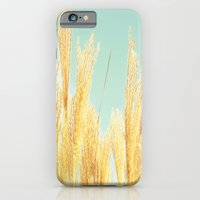 iPhone & iPod Case featuring after-glow by Danielle W