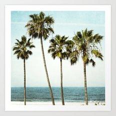 Ocean Palms  Art Print