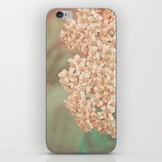 Botanical Still Life Yarrow in Apricot and Jade iPhone & iPod Skin