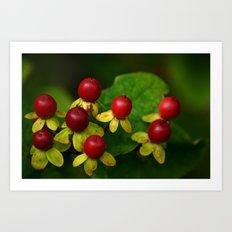 Berry Good! Art Print
