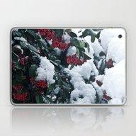 Winter And Snow Laptop & iPad Skin