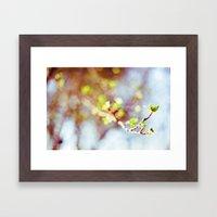 Spring Buds Framed Art Print