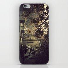 nieve en urkiola iPhone & iPod Skin
