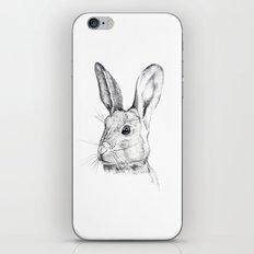 Cheeky Hare iPhone & iPod Skin