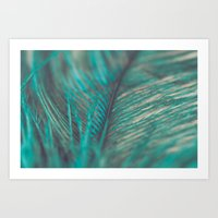 Turquoise Feather Close Up Art Print