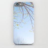 Spring Light. iPhone 6 Slim Case