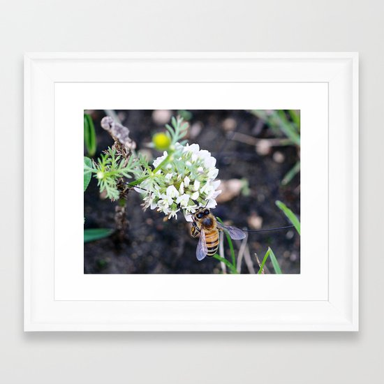 Busy Framed Art Print