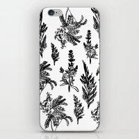 fleur noir iPhone & iPod Skin