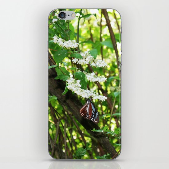 Japanese Butterfly iPhone & iPod Skin