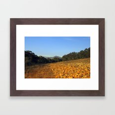 Reflecting Light Framed Art Print