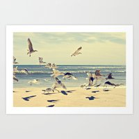 Seagulls Over Westhampton Beach Art Print