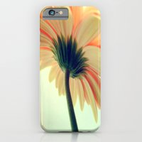 Flower in the spring iPhone 6 Slim Case
