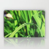 Morning Rain in Deutschland Laptop & iPad Skin